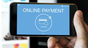 online pay 2